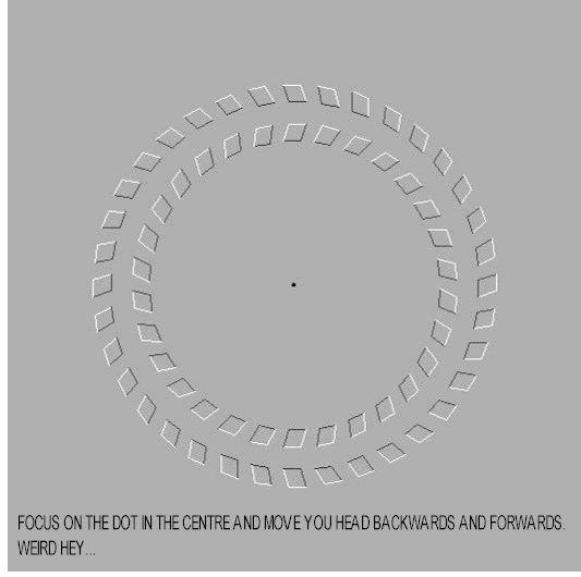 Weird Optical Illusions